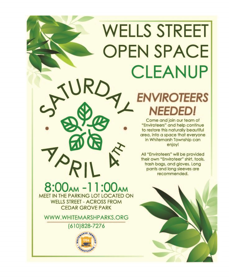 2020 Spring Wells St Cleanup